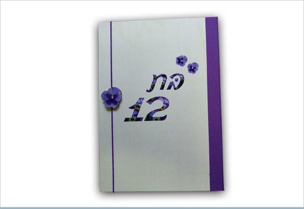 אלבום בת מצווה 12