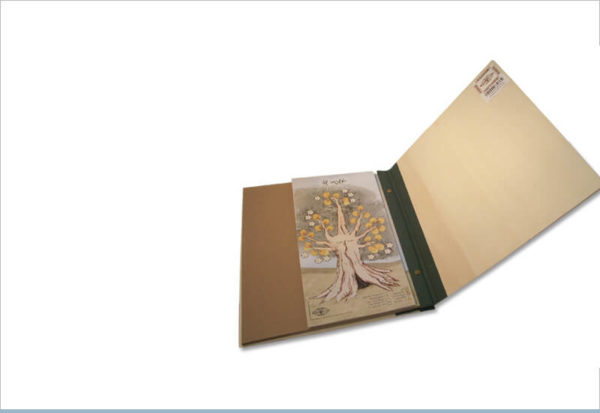אלבום שורשים רחב עץ רימון